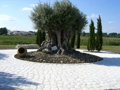 CERALIT : la vraie qualité pierre sur www.ceralit.fr  - Batiweb