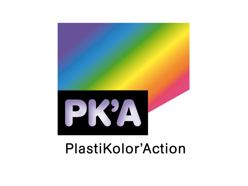 PLASTIKOLOR ACTION - Batiweb